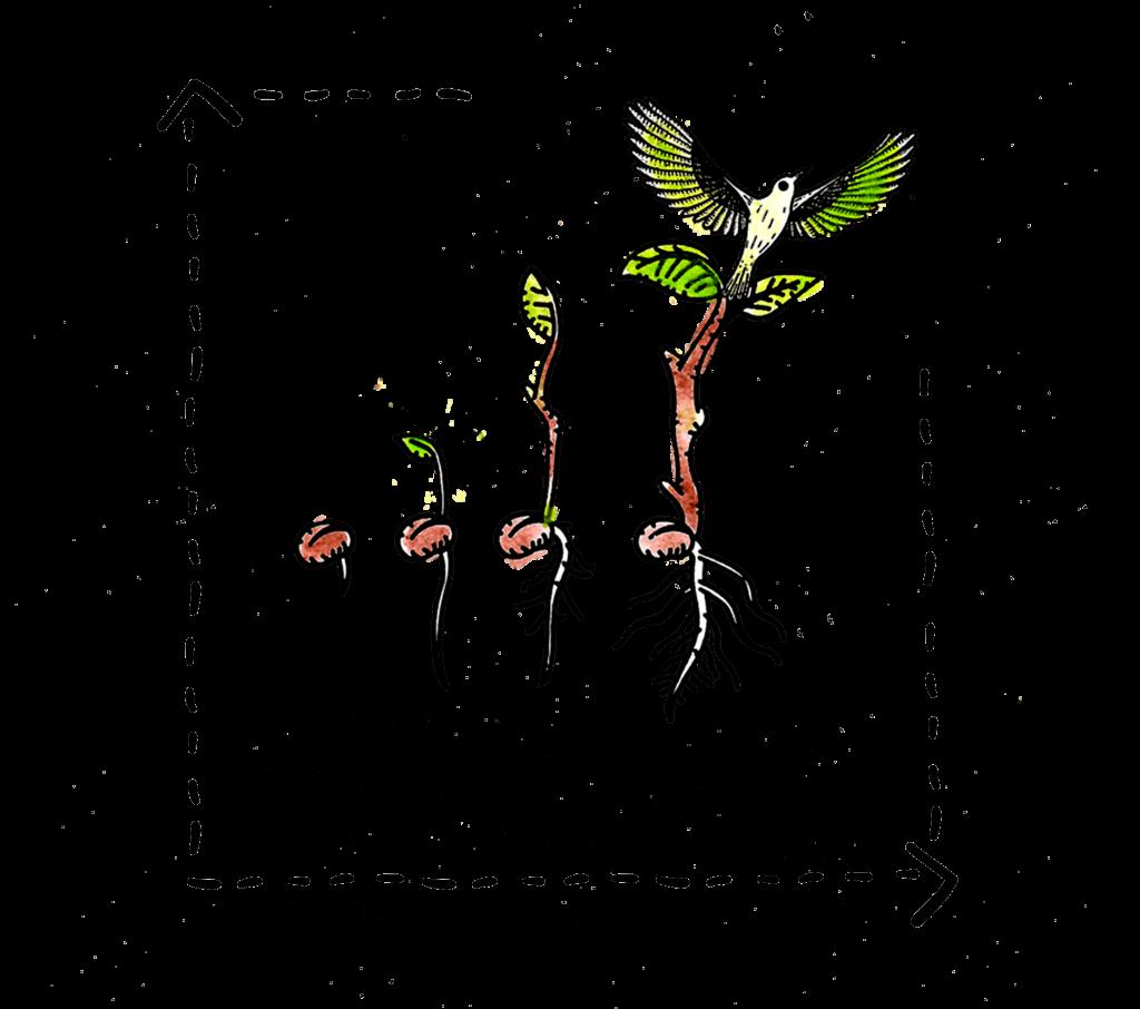 blm-logo-evolvi